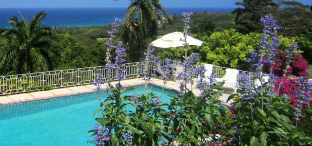 An abundance of tropical flowers on all sides adorn the grounds and erase all thoughts of winter.