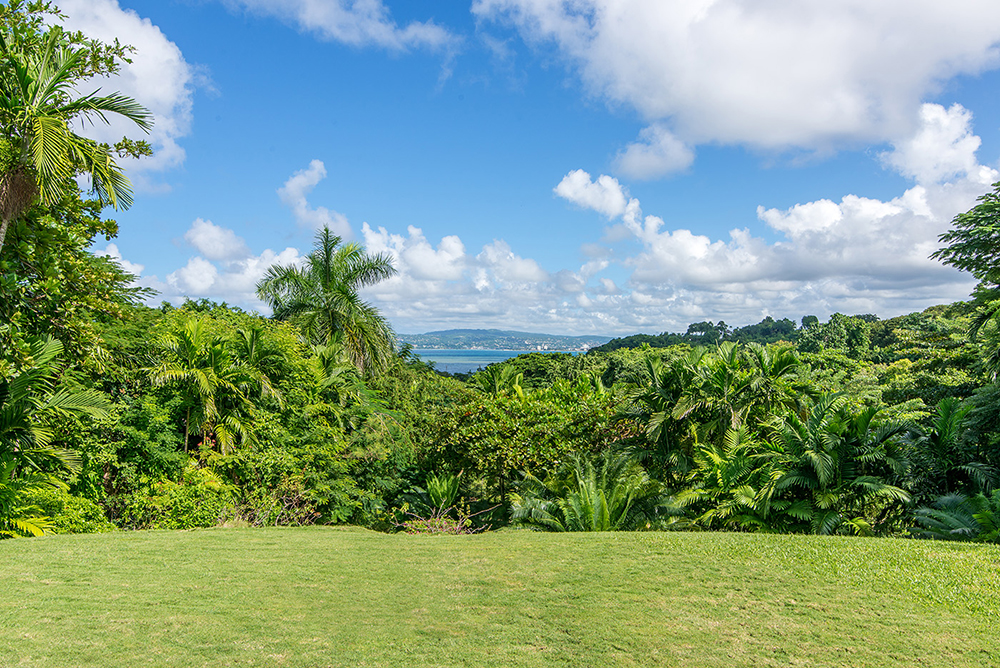 Views of Montego Bay in the east