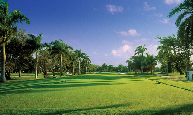 GREATVIEW IS FOR GOLFERS!  Three world-class golf courses (Cinnamon Hill, Half Moon and White Witch -- each presenting a different challenge) are within a five-minute drive.  Special gues