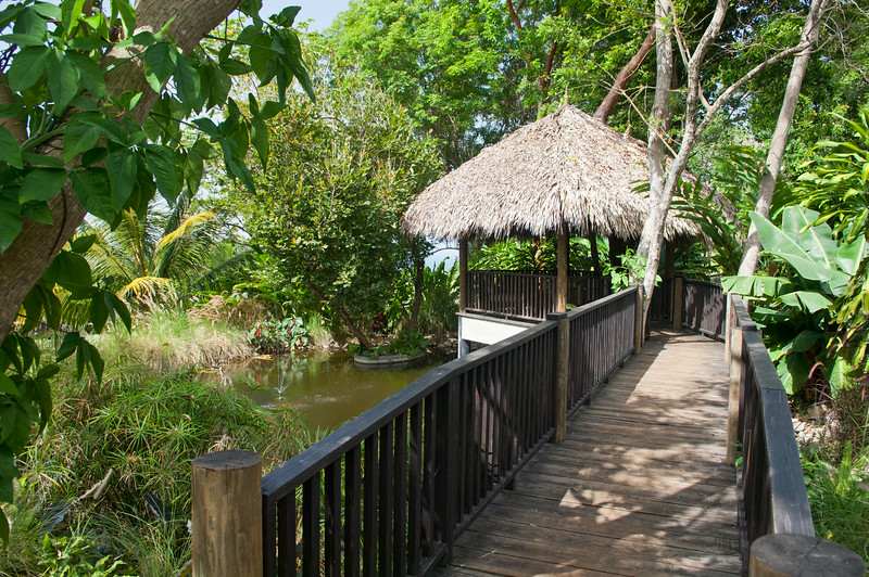 Before you leave, stroll up the lawn to a hidden bridge that leads to a quiet spot:  a secluded thatch gazebo for laptops and naps or just for taking time to observe where you are this week.
