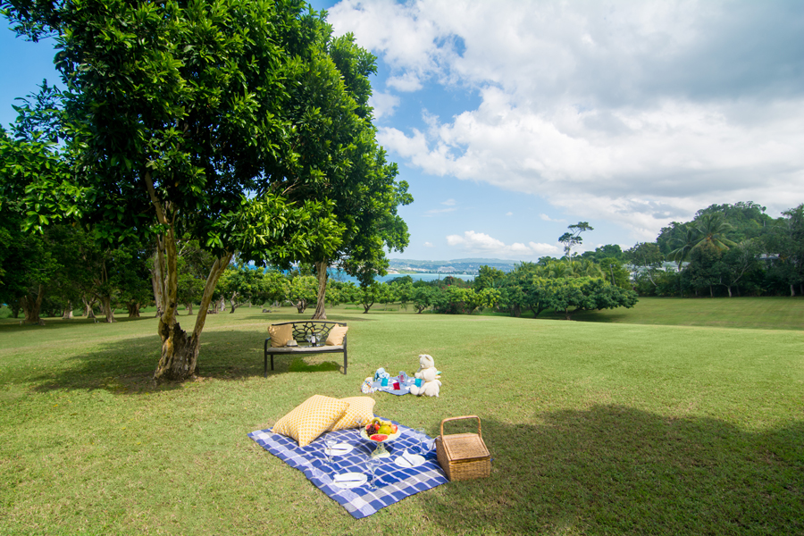 A swing under a shade tree, picnics for big kids and small, and unlimited lawns are some of what attracts families back to this abundant space year after year.